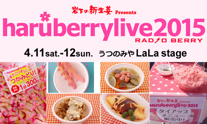 haruberry2015_re