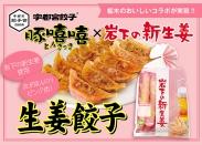 宇都宮餃子 豚きっき×岩下の新生姜「生姜餃子」誕生
