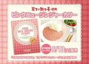 『ピンクニュージンジャーカリー』新発売