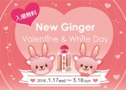 NEW GINGER Valentine & White Day