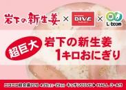 画像:岩下の新生姜×キッチンDIVE×L-Boomコラボ「超巨大岩下の新生姜1キロおにぎり」がニコニコ超会議2018に登場。