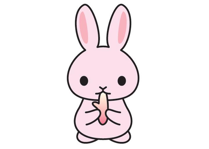 bunny_048