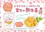 画像:『ドライフルーツみたいな岩下の新生姜』2018年2月1日発売