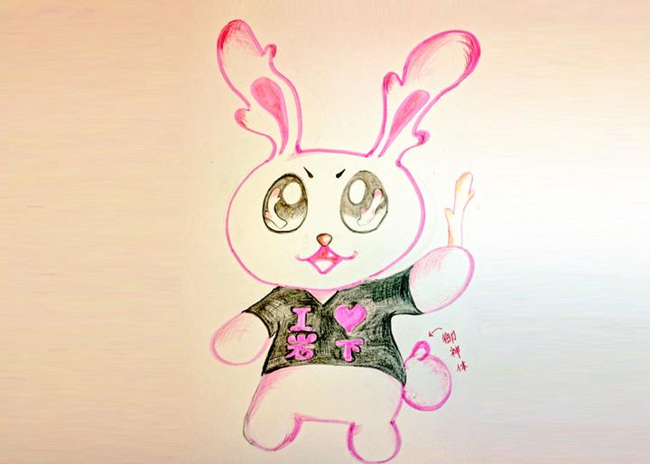 bunny_035