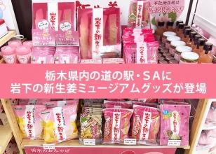 画像:栃木県内の道の駅・サービスエリアに岩下の新生姜ミュージアムグッズが登場。