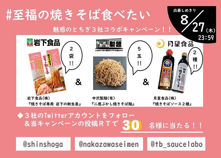 画像:魅惑のとちぎ3社コラボキャンペーン「#至福の焼きそば食べたい」