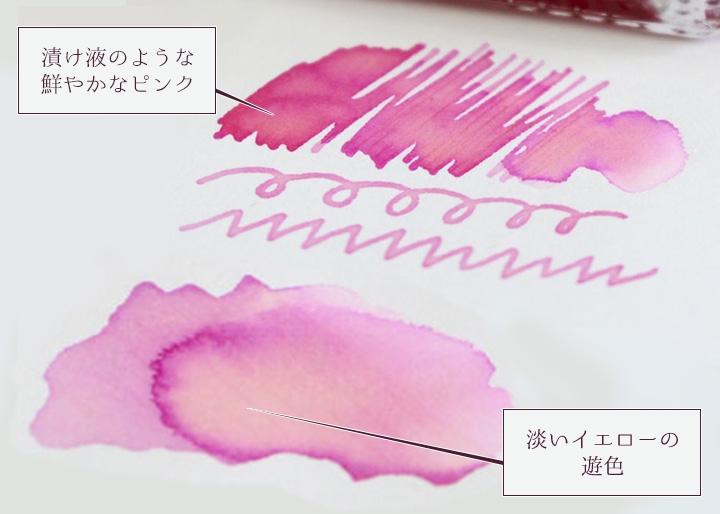画像:『岩下の新生姜万年筆インク』筆記イメージ