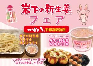 画像:つぼ八宇都宮駅前店で『岩下の新生姜フェア』開催