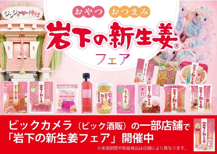画像:ビックロ ビクッカメラ新宿東口店・ビックカメラ新宿西口店で「岩下の新生姜フェア」開催